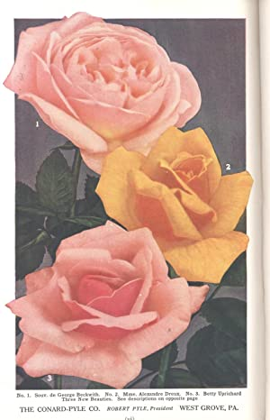 The American rose annual : the 1927: McFarland, John Horace,