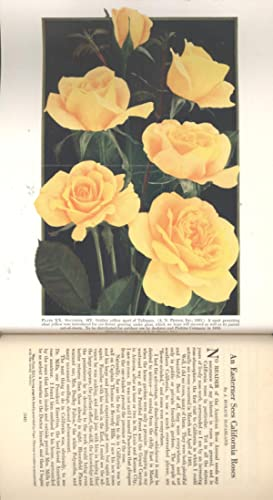 The American Rose Annual, the 1932 Year-Book: McFarland, John Horace,