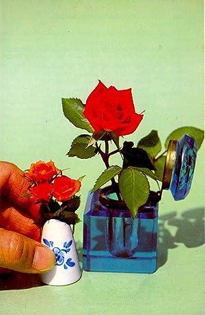The American Rose Annual : 1980 [Vol.: American Rose Society.[Howard