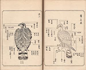 Ehon Taka Kagami [Illustrated Guide to Falconry]: Kawanabe, Kyosai