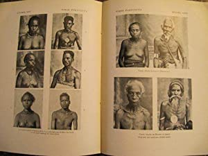 Timor Portugues. Contribuicoes para o seu Estudo Antropologico.: Mendes Correa, A.A.