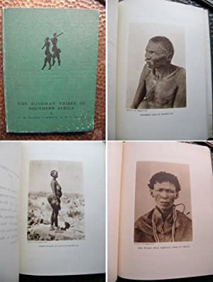 The Bushman Tribes of Southern Africa.