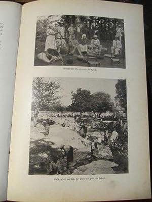 Die Insel Haiti.: Tippenhauer, L.G.