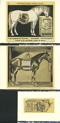 HORSE Advertisements made into 3-blank note cards.