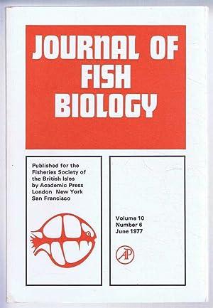 P K Mishra, First Edition - AbeBooks