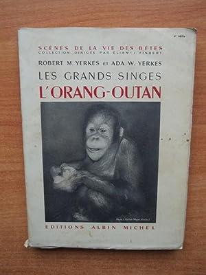 LES GRANDS SINGES : l'ORANG-OUTAN: Robert M.YERKES et