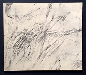 Cy Twombly: Paintings, Drawings, Constructions 1952-1974: Delehanty, Suzanne