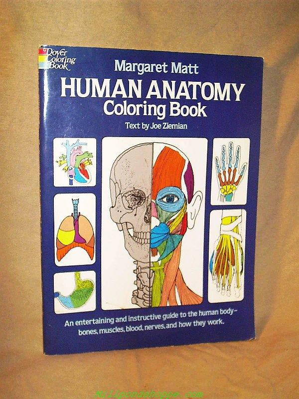 Human Anatomy Coloring Book By Matt Margaret