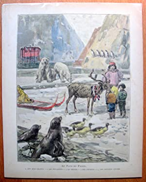 Antique Lithograph. Eskimos and Arctic Animals- Polar Bears, Reihdeer, Seals, Ducks Etc.