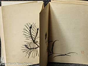 TWO ALBUMS OF JAPANESE WOODBLOCK PRINTS [2 FANFOLD VOLS, 1905]: Unknown