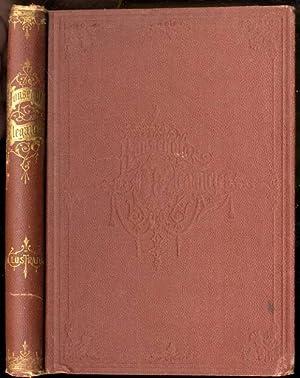 HOUSEHOLD ELEGANCIES: SUGGESTIONS IN HOUSEHOLD ART AND TASTEFUL HOME DECORATIONS.: Mrs. C. Jones ...