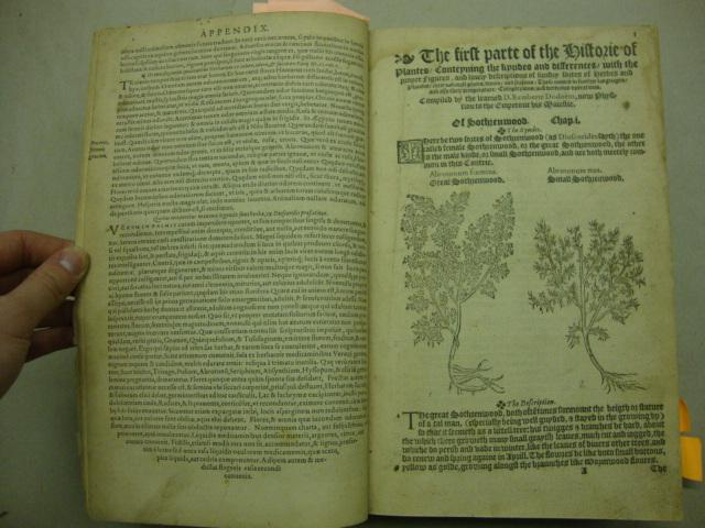 A Nievve Herball, or, Historie of Plantes. [A New Herbal]: Dodoens, Rembert