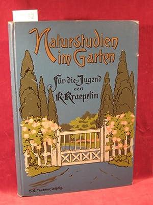 Naturstudien im Garten. Plaudereien am Sonntag Nachmittag. Ein Buch für die Jugend.: Kraepelin...