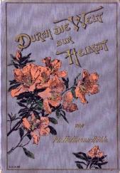 Durch die Welt zur Heimat. Zwei Erzählungen für junge Mädchen von Flora Hoffmann - R...