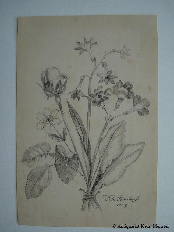 Blumenstrauß Originale Bleistiftzeichnung Bezeichnet Gez