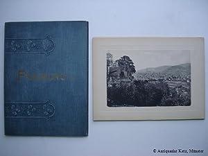 Postkarte Blühender Kirschbaum Ferdinand Hodler 1905