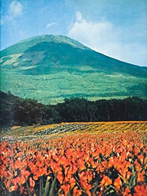 Hachijo: Isle of Exile: Kasai, Shigeo