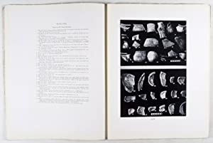 Ain Shems Excavations (Palestine) - Part IV (Pottery) [Biblical and Kindred Studies No. 7]: Grant, ...