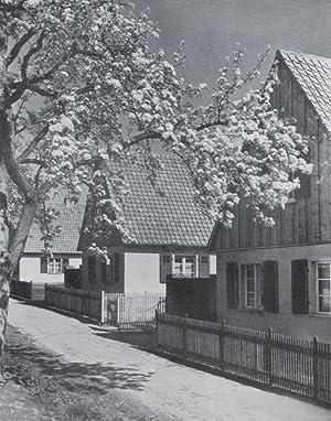 Landschafts-Gemäß Bauen: Böckler, Erich