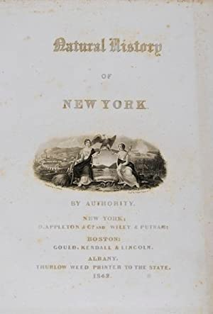 Natural History of New York: Mineralogy of New-York: Beck, Lewis C.