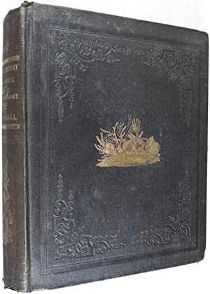 Natural History of New York; Geological Survey of New York: Paleontology- Volume IV, Part I.: Hall,...