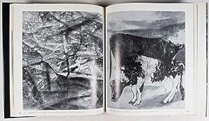 Lying Dragon: A Collection of Drawings by Iri Maruki, Chiaroscrurist: Maruki, Iri