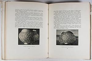 """Iskusstvo drevnyei rusi u solivychegodskoi"""" [Art of Ancient Russia in Solvychegodsk]: ..."""
