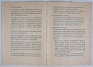 Richtlinien für Behelfsbauten für die Rüstung: Göring, Hermann