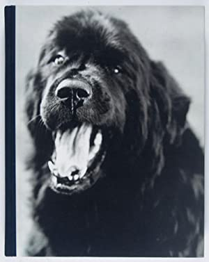 Gentle Giants: A Book of Newfoundlands: Weber, Bruce