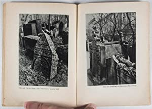 Tajemstvi zidovskeho hrbitova v Praze (Die Geheimnisse des Judenfriedhofes in Prag): Retcliffe, ...