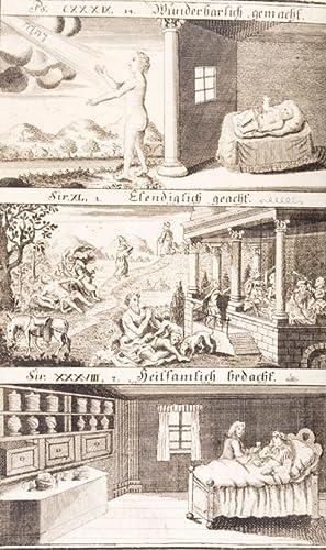 Biblischer Medicus, Oder Betrachtung des Menschen, nach der Physiologie, Pathologie und ...