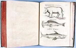 Apparatus Biblicus sive Manuductio ad Sacram Scripturam, Tum clarius, tum facilius intelligendam (...