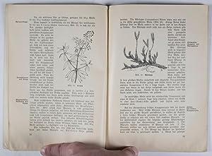 Das Färben mit deutschen Pflanzen (Coloring with German Plants): Wagner, Gerhard