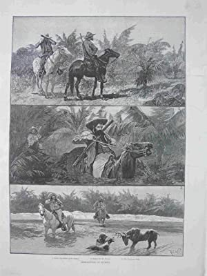 Deer-Hunting in Florida. 1892. R.C.W. Original engraved