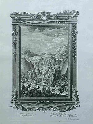 Serpentes Urentes. Brennende Oder Feurige Schlangen. Scheuchzer-Bibel.: Heuman, G.D.; Scheuchzer,