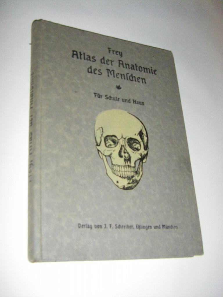 atlas des menschlichen - ZVAB