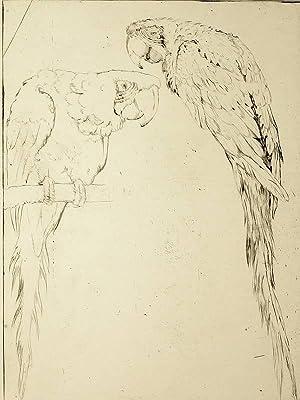 Martin Erich Philipp. - MEPH. - Zwei Papageien.
