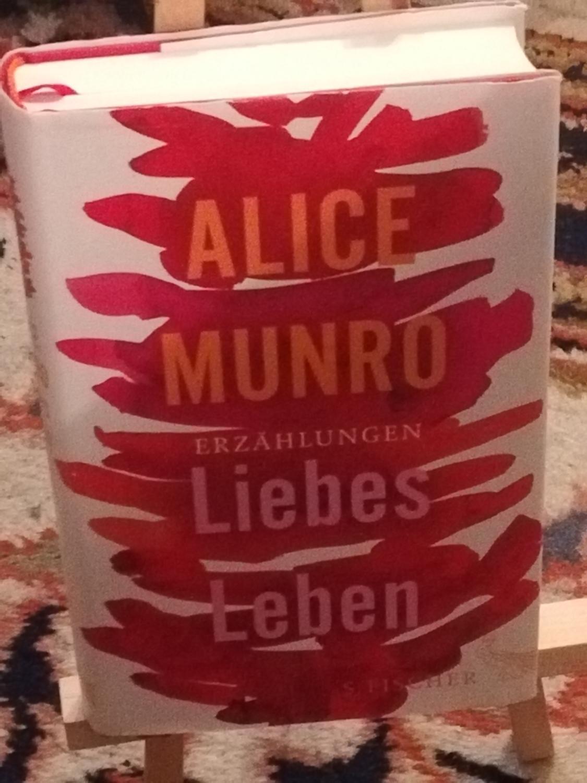 Liebes Leben (Liebesleben): Munro Alice