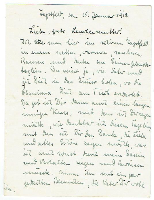 25 St/ück 30,5 cm Schwarz Papier-Innenh/üllen