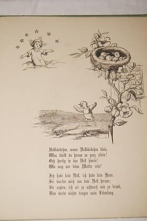 HIMMELSSCHLÜSSEL UND GÄNSEBLUME VON EINER KINDERMUHME: Marie von OLFERS