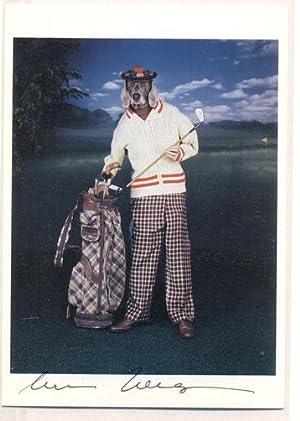 Golfer: Wegman, Will [Postcard]