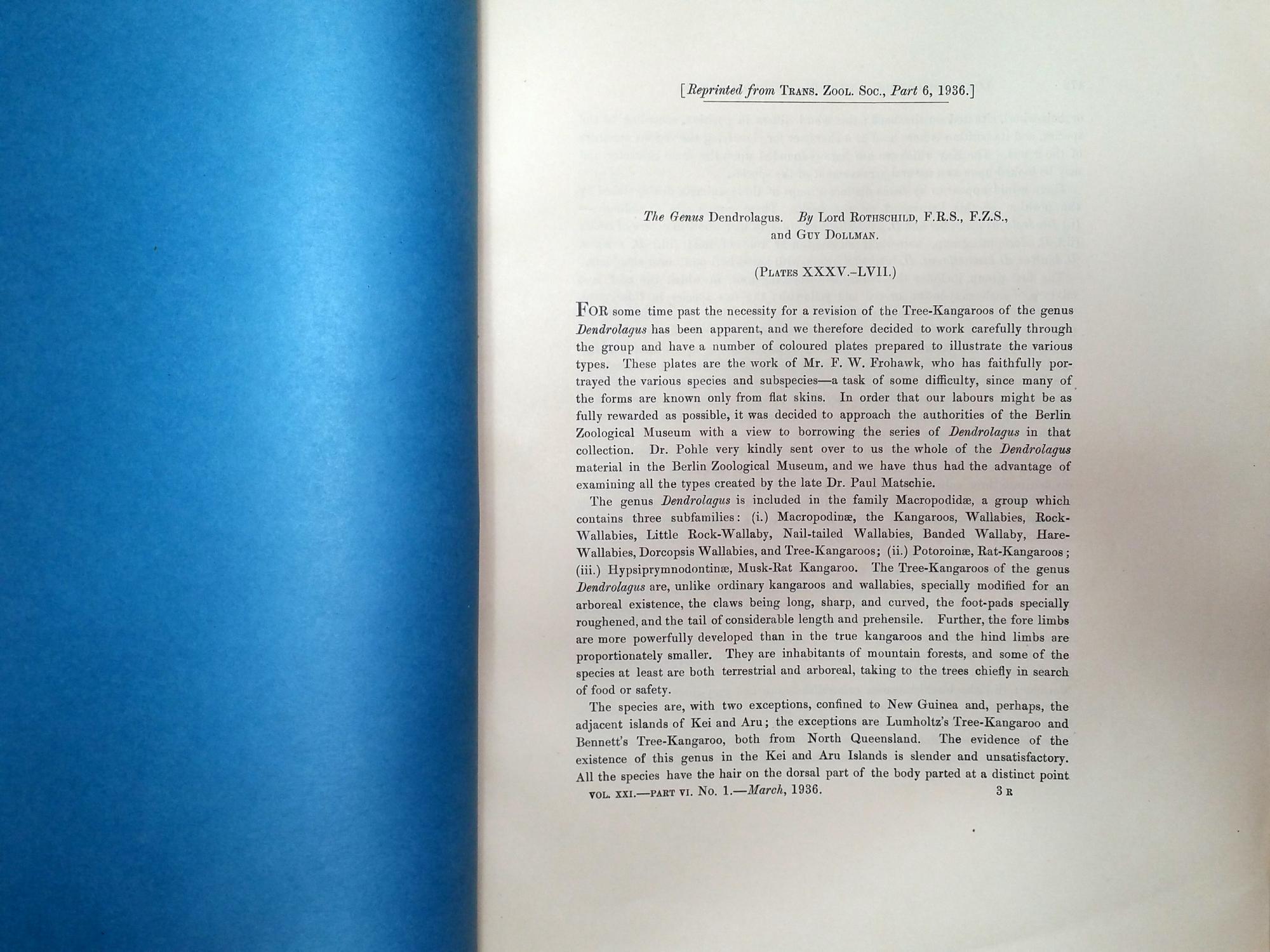 Vialibri ~ (1259787).....rare books from 1936
