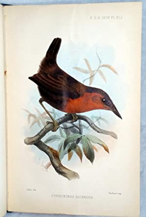 On the Birds Collected By the Late Mr. T. K. Salmon in the State of Antioquia, United States of ...