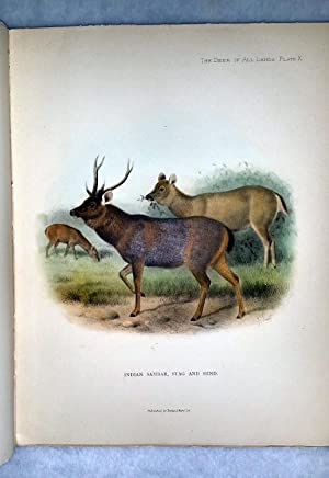 The Deer of All Lands: A History of the Family Cervidae, Living and Extinct: Lydekker, R.