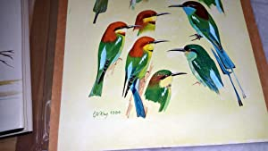 The Bee-Eaters [with] Eight Original Gouache Paintings Used for the Eight Colour Plates of This ...