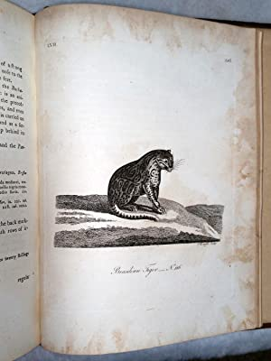 History of Quadrupeds (Two Volumes): Pennant, Thomas]