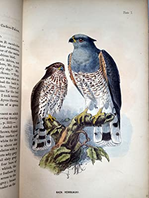 The Birds of South Africa: Layard, Edgar Leopold (Revsied and Augmented By R. Bowdler Sharpe)