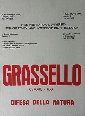 Beuys, Joseph. Operazione Grassello Pescara - Düsseldorf.
