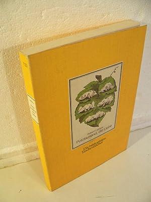 Potztausend die Liebe - 80 alte Postkarten: Lebeck, Robert [Hrsg.]: