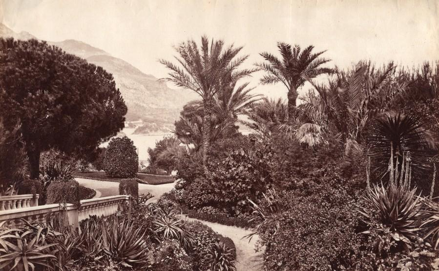 French_Riviera_Monte_Carlo_Garden_Panorama_old_Jean_Gilletta_Photo_1880_Jean_GILLETTA__